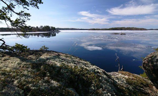 Воздух в финских лесах настолько чист, что первое время просто кружится голова. А воду в большинстве озер можно просто взять и выпить, и ничего вам не будет!