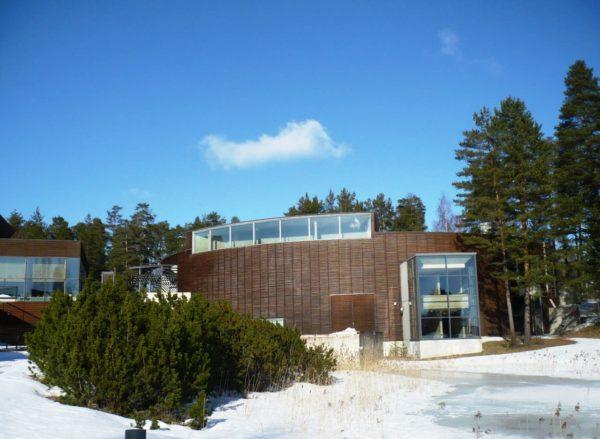 Интереснейший музей леса